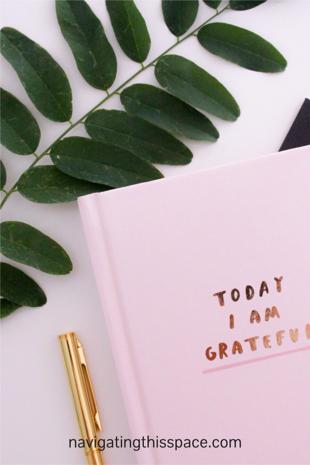Today I Am Grateful journal notebook with a gold pen